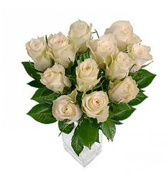 White roses symbolise truth, speaking volumes for innocence, purity, reverence, humility, and silence. This is the perfect rose to let someone know that you miss them or want to be with them, and it is also the rose used to convey secrets too!