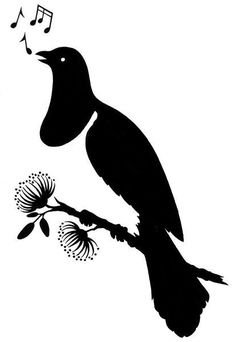 An poster sized print, approx (other products available) - A plain black silhouette of the New Zealand native pigeon the Kereru sitting on a pohutukawa tree in flower singing his melody - Image supplied by Australian Views - Poster printed in the USA Bird Silhouette, Black Silhouette, Wedding Silhouette, Thai Tattoo, Irezumi Tattoos, Wood Pigeon, Maori Designs, Fine Art Prints, Canvas Prints