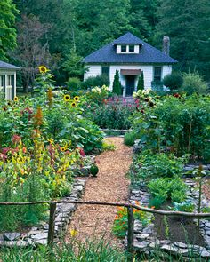 Edible Landscape: Love this garden.
