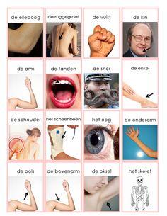 lichaam 2 Learn Dutch, Learn German, Dutch Phrases, Dutch Language, Language Lessons, Dutch Recipes, Toddler Activities, Human Body, Grammar