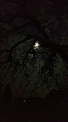 This moon...