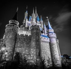 Another selective color photo. The castle at night.