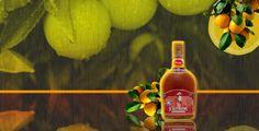 Naranja #orange #liqueur #mayordomo #maguey #oaxaca