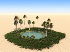 An oasis is a lush green area in the middle of a desert, centered around a natural spring or a well, found historically along the Silk Road in Asia. What Is An Oasis, Desert Oasis, Web Design, Sky Garden, Sunset Wallpaper, Spring Nature, Environment Concept, Biomes, Australia Travel