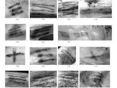 Scienza: scoperti nuovi tatuaggi sul corpo della mummia Otzi - Yahoo Notizie Italia