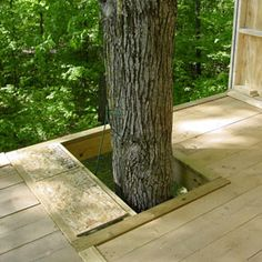 Advice and tips for building, attaching and furnishing your home in the treetops
