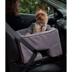 Pet Gear Car Booster Seat | Booster Seats | PetSmart $79.99
