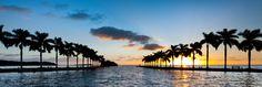 Sonnenuntergang in Miami #Miami #Sunset #Palms #MiamiBeach #summer #SoMiami #VisitMiami