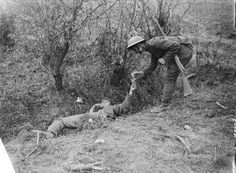 """July 31, 1917, The Battle of Pilckem Ridge - British soldier giving a """"light"""" to a badly wounded German lying in a ditch."""
