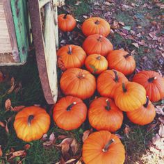 pumpkin, autumn, and fall image Hello Autumn, Autumn Day, Autumn Leaves, Winter, Autumn Harvest, Harvest Time, Autumn Aesthetic, Seasons Of The Year, Happy Fall Y'all