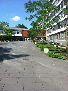Frankfurt University of Applied Sciences in Frankfurt am Main, Hessen  Partner of Business