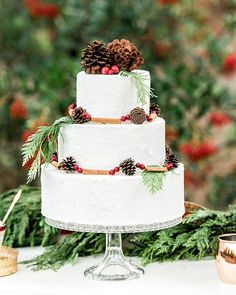 "We're all about this three-tier cake, decorated with pinecones + ""freshly fallen snow"" by @_lovecakes_!  See more from this holiday editorial #onGWS {link in bio!} ✨ photog: @christineskariphotography 