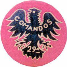 29ª Companhia de Comandos Moçambique