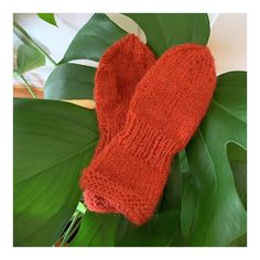 Baby Barn, Barnet, Knitting For Kids, Fingerless Gloves, Arm Warmers, Mittens, Knitting Patterns, Diy And Crafts, Projects To Try