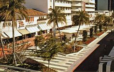 """*Florida Postcard-""""New Lincoln Road Mall"""" -Showplace Tropical World/ Miami Beach Old Florida, Vintage Florida, Miami Florida, Miami Beach, New Lincoln, Lincoln Road, Beautiful Photos Of Nature, Nature Photos, Florida Pictures"""
