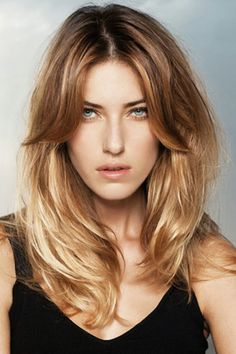 gorgeous illustration of warm light brown sombre fading into a breathtaking tone of pearly blonde at the ends