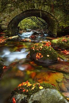 Autumn Bridge ~ Inistioge, County, Kilkenny Ireland - This is so beautiful and peaceful. Beautiful World, Beautiful Places, Beautiful Pictures, Nature Pictures, Ouvrages D'art, Dame Nature, Belle Photo, Beautiful Landscapes, Wonders Of The World