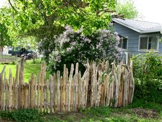 """this is a """"neat"""" driftwood fence"""
