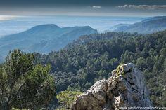 El Plá de #Mallorca desde el adarve del Castell d´Alaró #Spain #travelphotography
