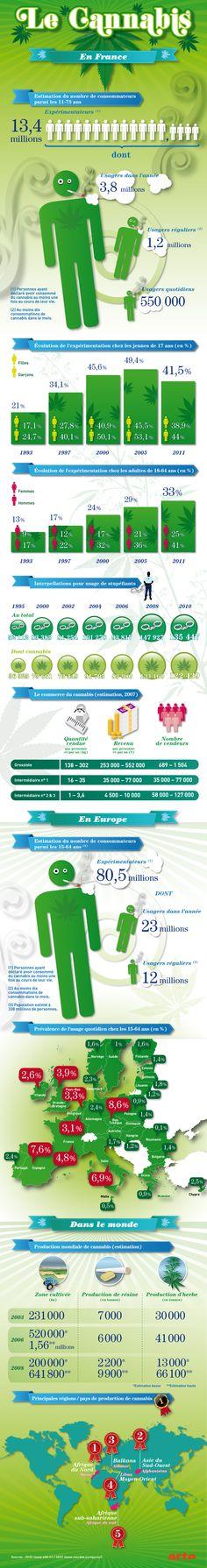 La consommation et la production de cannabis : infographie | Le cannabis en France, en Europe et dans le monde | Les paradoxes du cannabis | Comprendre le monde | fr - ARTE