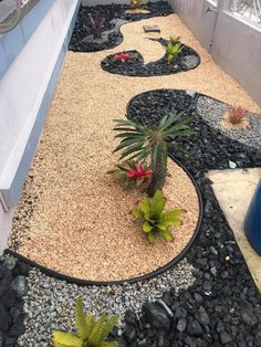 Gravel Landscaping, Tropical Landscaping, Modern Landscaping, Garden Edging Ideas Cheap, Front Garden Landscape, Backyard Seating, Modern Garden Design, Raised Garden Beds, Plants