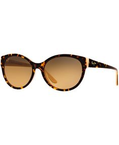 ed57e5ad92 12 Best Maui Jims images | Glasses, Jim o'rourke, Maui jim sunglasses