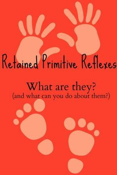 The Transplanted Southerner: Retained Primitive Reflexes: What Are They? (and what can you do about them?)