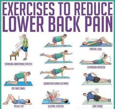 Exercises to reduce lower back pain