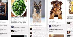 Pinterest: cos'è e come funziona il social network dell'anno