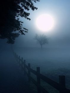 Moonlight in the mist