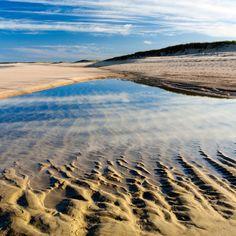 Coast Guard Beach, Massachusetts - The Best Beaches in the USA - Coastal Living