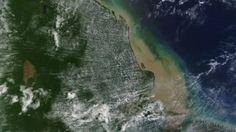 Pregopontocom Tudo: Pesquisadores descobrem recife de coral na foz do Rio Amazonas ...