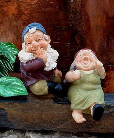 Gut-laughing gnomes