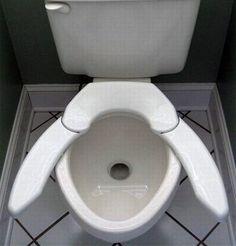 Interesting toilet seat...