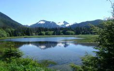 Floresta Nacional Tongass, Sudeste do Alasca, EUA