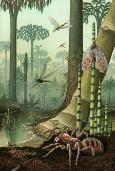 A carboniferous scene, fossil footprints from the West Midlands of England hint at global climate change 310 million years ago.