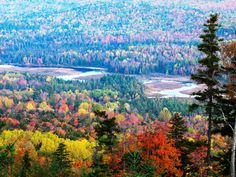 Fall in Carrabassett Valley