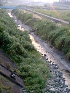 20140107 他就坐在河堤邊 旁邊總是跑步客、情侶走過 他,就坐在河堤邊