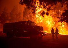 161123_BADASTRO_Wildfire-SantaCruz