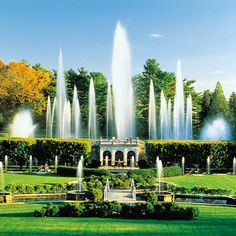 Longwood Gardens is about an hour or so outside Philadelphia, on what used to be an estate owned by the DuPont family. It's a must-see if you are in the area.