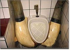 Weird Toilets Urinals and Sinks from Around the World
