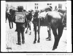 The Belgian Cavalry in 1914 carrying homing pigeon cages for military duty in WW1 / Cavalerie belge emportant des cages de pigeons voyageurs : [photographie de presse] / [Agence Rol] - 1