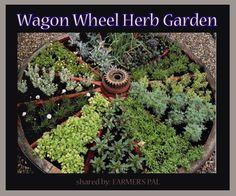 Awesome herb garden idea