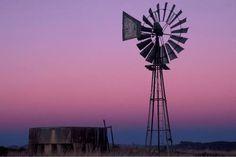 Karoo Windmill