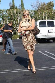 13 Celebrities With Pugs