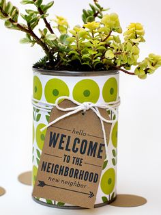 welcome to the neighborhood potted plant...great idea to brighten a new apartment!