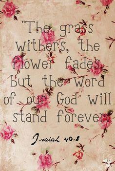 """Isaías 40:8  """"Seca-se a erva, e caem as flores, mas a palavra de nosso Deus subsiste eternamente."""" """
