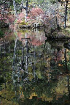 Kamikochi 上高地 #Japan #Nagano #Matsumoto