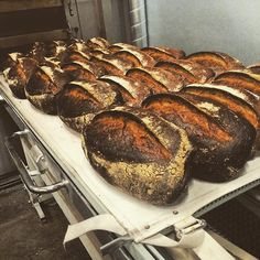 belles miches de pain au levain qui sortent du four : Good day!