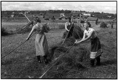 SWEDEN. 1956.